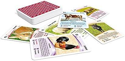 26 cartes Neuf Enfants Créer jeu de cour de ferme emporte sur jeu de cartes in tin case