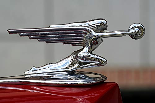 Photography Poster - Hood Ornament, Packard, Antique, for sale  Delivered anywhere in USA