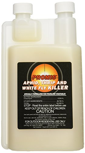 NPK Industries Promis Insecticide Concentrate, 1-Quart ()