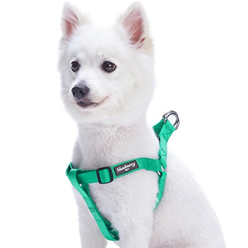 Blueberry Pet 19 Colors Step-in Classic Dog Harness, Chest Girth 20