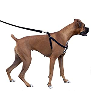 Large Dog Harness  Inches Non Pull