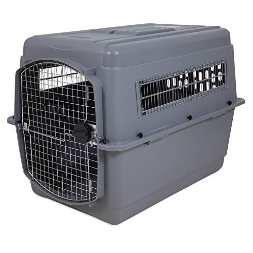 Amazon.com   Petmate Sky Kennel for Pets from 70 to 90-Pound e67b8ee16871