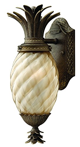 Hinkley 2126PZ Leaf, Flower, Fruit One Light Wall Mount from Plantation collection in Bronze/Darkfinish,