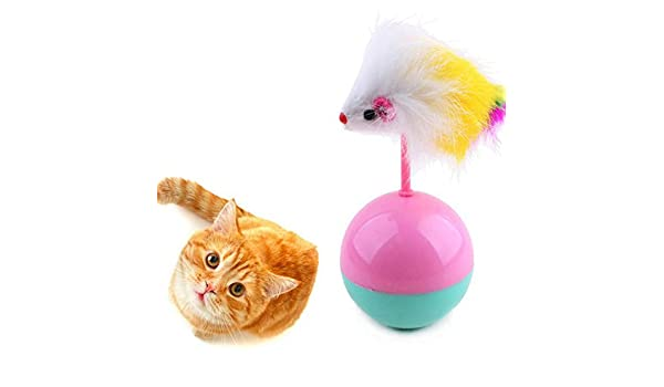Amazon.com : Best Quality pet cat Toys Funny Supplies Mouse Tumbler cat Dog Toy Plush with Balls cat Toys Training Kitten Kitty Pets Accessories : Pet ...