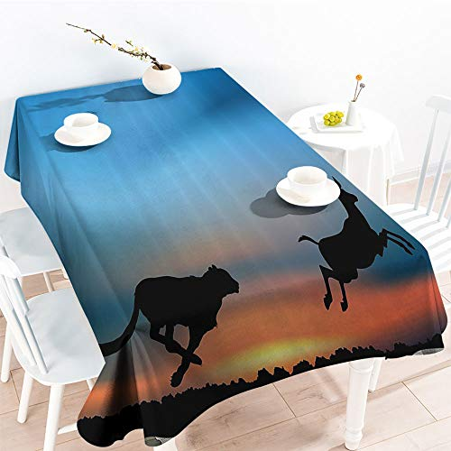 Jinguizi Rectangular Table Covers Cheetah Hunting an Antelope View of Wild Nature African Travel Pictureindoor Outdoor TableclothSky Blue Salmon Black(50 by 80 Inch Oblong Rectangular)]()