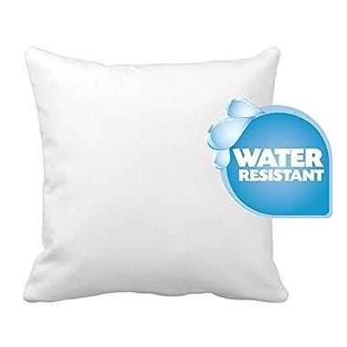 IZO Home Goods Premium Outdoor Anti-mold Water Resistant Hypoallergenic Stuffer Pillow Insert Sham Square Form Polyester, 18  L X 18  W, Standard/White