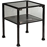 Terrarium Display End Table with Silver Distressing in Black