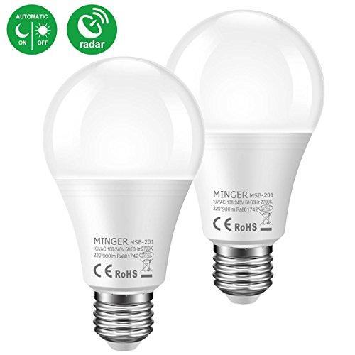 100 Watt Outdoor Light Bulb - 6