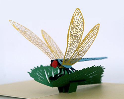 CUTPOPUP | Dragonfly | 3D Pop Up All Occasion Greeting Card | Delightful Dragonfly Design Makes a Lovely Gift Card | With ()
