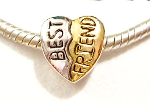 (Best Friend Heart European Pugster Charm with Pandora Bead Polishing Cloth)