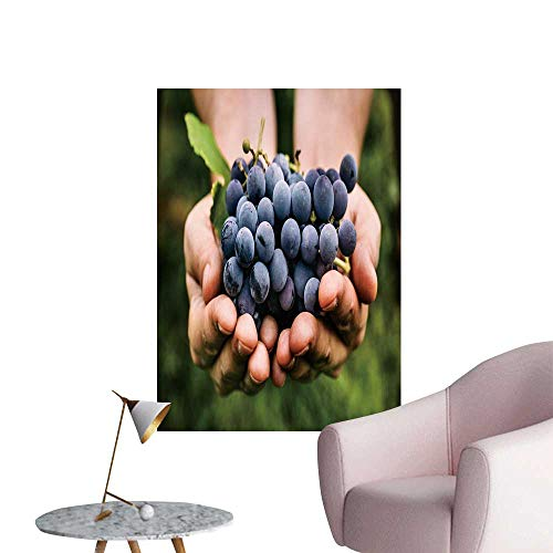 SeptSonne Wall Decoration Wall Stickers Grapes Harvest farmerss ly harveste Black Grapes Print Artwork,28