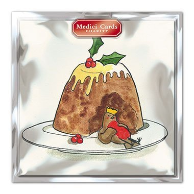 Medici Charity Christmas Cards - Pack Of 8 Cards - Robin & Christmas Pudding - In aid of the following Charities: Marie Curie Cancer Care, Parkinsons, CLIC Sargent, Oxfam, Lifeboats, Macmillan (Charity Christmas Robin Cards)