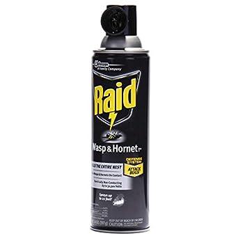 Amazon.com: Raid DRK cb013536 Wasp y Hornet Killer, 14 oz ...
