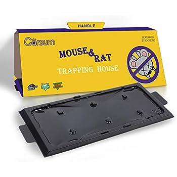 Amazon Com Garsum Mouse Trap House Rat Sticky Traps