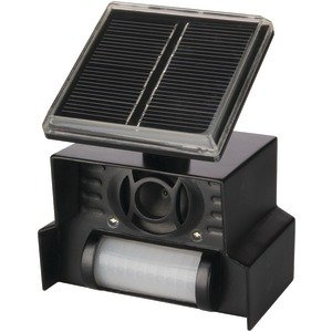 P3 International P7815 Solar Animal - Sale For P3