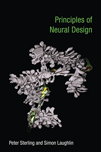 Download Principles of Neural Design Pdf