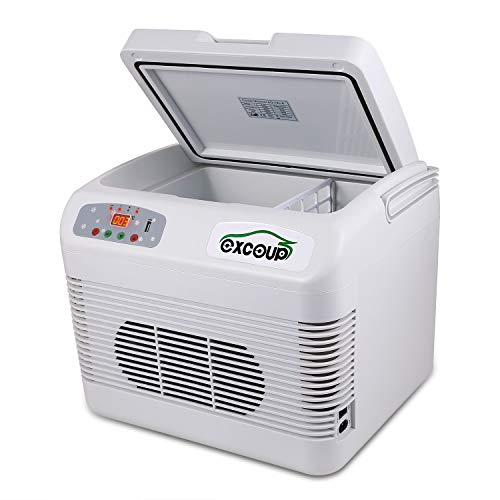 Electric Cooler and Warmer with Portable Handle