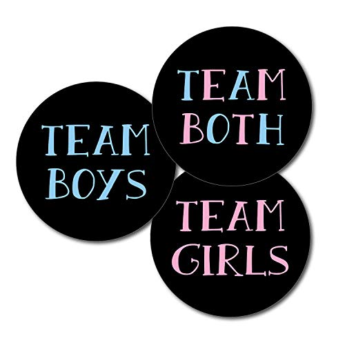 36 2.5 inch Twin Gender Reveal Party Stickers - Team Boys Girls Both - Chalkboard