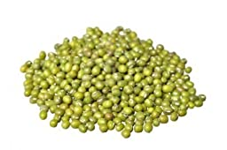 Sprouting Seeds Mung Bean 5 Pounds - Todd\'s Seeds [Misc.]