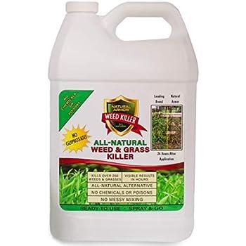 Amazon.com : Green Gobbler Vinegar Weed Killer | Natural