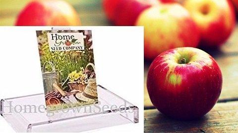 - Homegrown Apple Seeds, 16, Jewel Apple Tree