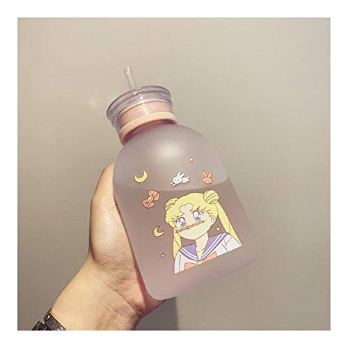 HONGTAI Sailor Moon Transparent Plastic water Bottle Cartoon Frosted water Bottles Leak-proof Drinkware Cute Student Girl Gift Cup (Color : 5, Size : 500ml)