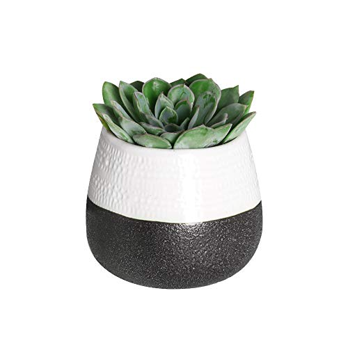 Hotsung 4.5 Ceramic Flower Pot Garden Planters Set of 1 Indoor Outdoor, Modern Nordic Style Plant Containers Black White