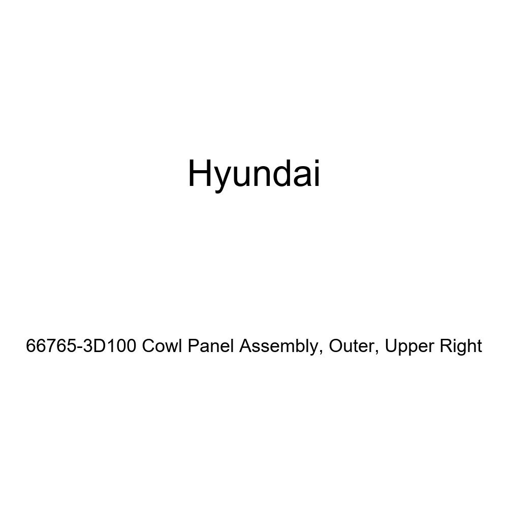 Outer Upper Right Genuine Hyundai 66765-3D100 Cowl Panel Assembly