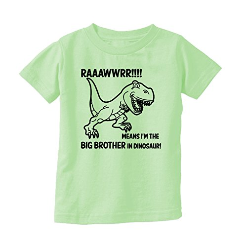 T-Shirt Universe Big Boys' Rawr! Means I'm The Big Brother In Dinosaur T-Shirt