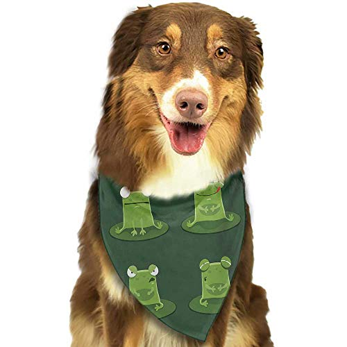 Quilted Frog (Colored pet Scarf Funny Funny Muzzy Frog on Lily Pad in Pond Hunting Tasty Fly Expressions Cartoon Animal W27.5 xL12 Scarf for Small and Medium Dogs and Cats)