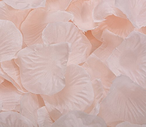 Flyusa 1000pcs Fabric Silk Rose Flower Petals Wedding Table Scaters Confetti Bridal Party Flower Girl Decoration(Champagne)