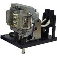 LAMP FOR SANYO PDG-DWT50L, PDG-DXT10L POA-LMP117 - POA-LMP117-BTI