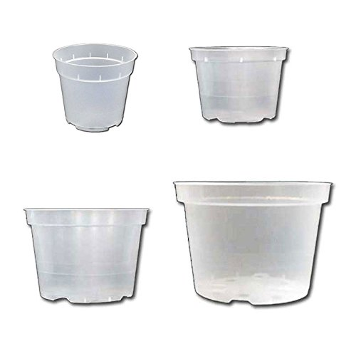 Rigid Clear Orchid Pots Assortment