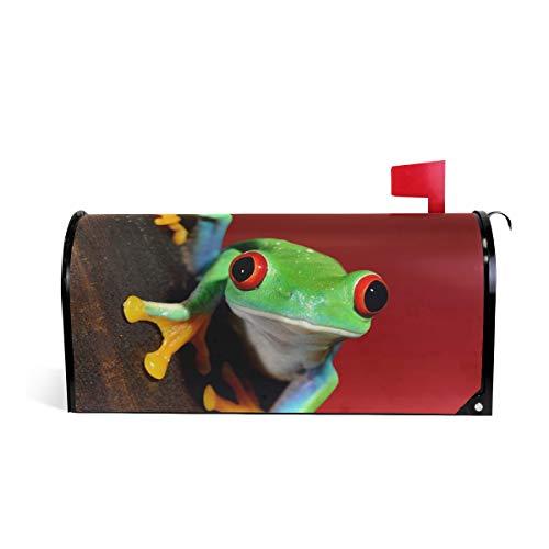 - JOYPRINT Magnetic Mailbox Cover Frog Animal Summer, Standard Size 21
