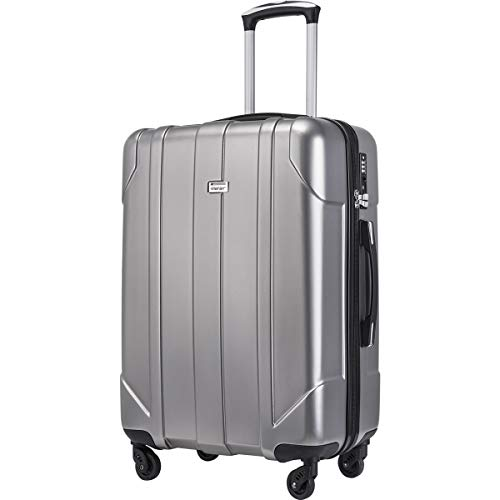 Merax Hardside Spinner Luggage with Built-in TSA Lock Lightweight Suitcase 20inch 24inch and 28 inch Available (Gray, 24-Checking in)