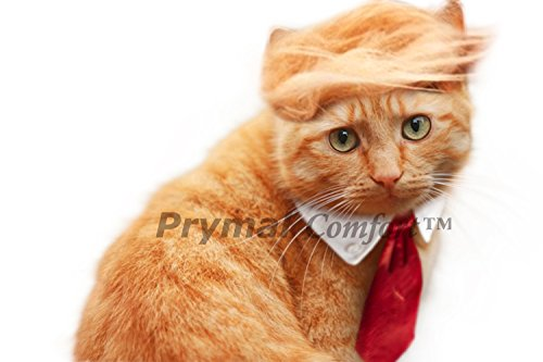 Prymal Comfort Trump Cat/Small Dog Costume and Tie for Halloween, Parties and Pictures -
