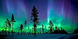 GladsBuy Aurora In Forest 20\' x 10\' Computer Printed Photography Backdrop Night Theme Background LMG-170