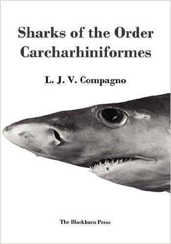 sharks of the order carcharhiniformes l j v compagno  sharks of the order carcharhiniformes l j v compagno 9781930665767 com books