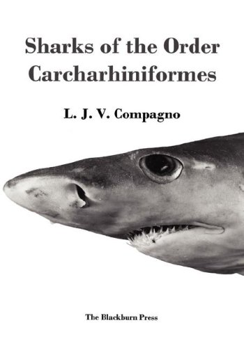 Sharks of the Order Carcharhiniformes
