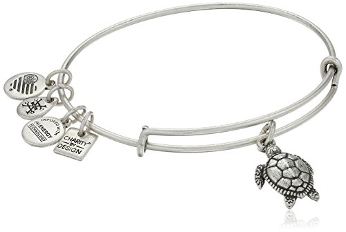 Alex and Ani Charity By Design Turtle Rafaelian Silver Bangle Bracelet from Alex and Ani