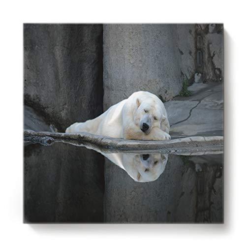 Florence International Art Award Bubble film Thick-Wrap Canvas Wall Art Print Entitled Resting Polar Bear ()