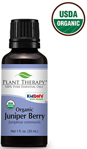 (Plant Therapy Juniper Berry Organic Essential Oil 30 mL (1 oz) 100% Pure, Undiluted, Therapeutic Grade )