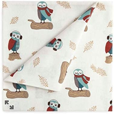 Amazon Com Jcp Home 100 Cotton Heavyweight Flannel Sheet Set Owls Size Twin Home Kitchen