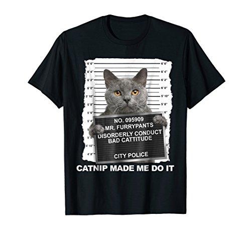 82395417d1 Graduation shirts for kids the best Amazon price in SaveMoney.es