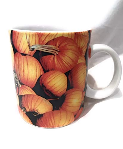 Starbucks 2007 Pumpkins Halloween Ceramic -