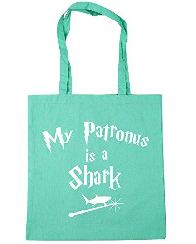 Tiburón Patronus X38cm Gimnasio De Compras Totalizador Es De Litros Bolsa Menta 10 Hippowarehouse Mi De De Playa 42 Un Cm 5pySWYKq