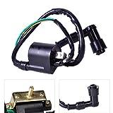 Amhousejoy 2-Wire Ignition Coil 4-Stroke for Chinese Made 50cc 70cc 90cc 110cc 125cc ATV Go-Kart Dirt Bike Pocket Bike