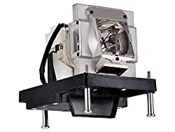 Original Philips Np22lp Lamp Housing For Nec Projectors 180 Day Warranty