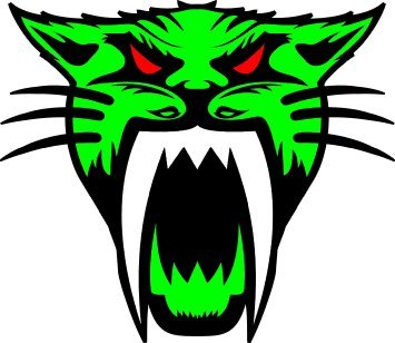 Arctic Cat Logo Sticker 4