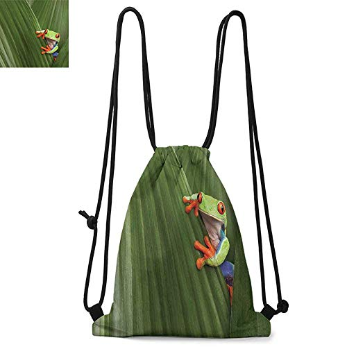 Animal Printed drawstring backpack Red Eyed Tree Frog Hiding in Exotic Macro Leaf in Costa Rica Rainforest Tropical Nature Suitable for school or travel W13.4 x L8.3 Inch Green